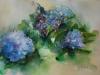 "Aquarel ""Blauwe Hortensias 2015"""