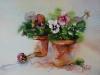 Aquarel Viooltjes in terracotta potten te koop