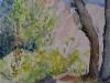 Aquarel cursist-hennie-rotsen
