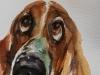 Aquarel Hond schetsboek studie -Joke Klootwijk