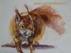 schetsboek pagina Eekhoorn - Joke Klootwijk