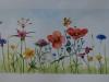 Aquarel opdracht-vera bloemen