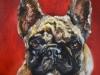 Hond Bulley opdrachtschilderij