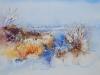 Aquarel uitzicht-in-de-sneeuw