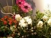 Bloemen schilderworkshop