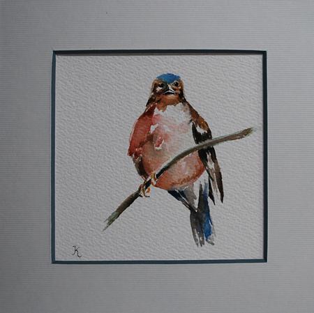 aquarel-vogeltje, maat 20x20 cm met p.p. te koop
