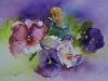 Aquarel violenpaars (verkocht)