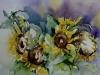Aquarel Zonnebloemen (Verkocht)