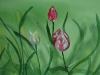 Tulpen in aquarel