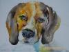 aquarel - Joke Klootwijk hondje schetsboek pagina