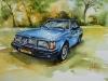 Aquarel-Joke Klootwijk Volvo240 size 29x42cm