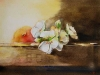 fruitkistje in aquarel (VERKOCHT)