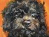 Olieverf-Hond-Beer-14x14-cm