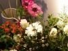bloemen workshop 2012
